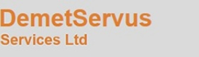 DemetServus Services Ltd - Accountants in Cyprus Portal